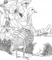 Barbie of Swan Lake Children Coloring Pages 4